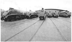 Mallard (alanpeacock2) Tags: mallard bittern dominionofcanada unionofsouthafrica sirnigelgresley dwightdeisenhower steamengine trains locomotive shildon art