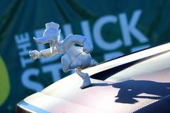 Duck Photo Op (dsgetch) Tags: duckfootball autzenstadium autzen eugene eugeneoregon collegefootball football footballseason