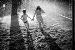 -  (lermaniac) Tags: sprinkler  water run kids bnw