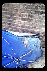 2010-12-02-08-43-08-923.jpg