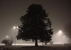 Le joggeur jaune dans le brouillard gris de la nuit noire (Yvan l'07) Tags: france ombre paysage fontaine nuit brouillard latuile