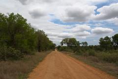 South Africa, inside the Kruger Park (arnalle) Tags: voyage africa travel southafrica pentax safari krugerpark kruger afrique arnaud afriquedusud arnal bouvard parckruger arnalle arnalphotography arnallephotography arnaudbouvard