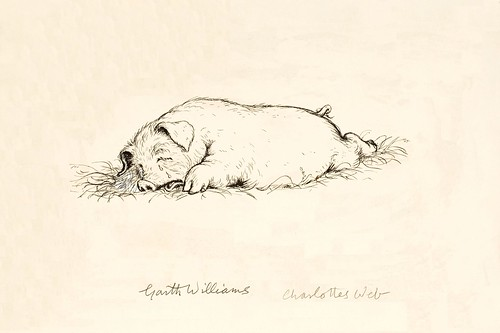 ink drawing of pig sprawled on stomach on ground