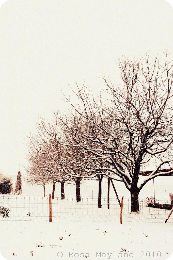 Snow Veyrier 6.1 bis