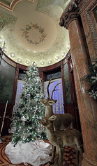 Christmas in the Castle (rsteup) Tags: christmas indiana christmastree christmaslights usf fortwayne christmasornaments brookside fortwaynein canon60d universityofsaintfrancis canoneos60d bassmansion fwfg christmas2010