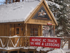 TreeZone base for our nordic XC ski hire