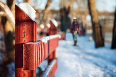 344/365: Happy Fence Friday {Red Fence  Winter Hiker} Edition! (pixelmama) Tags: winter shadow snow texture december bokeh foxriver 2010 islandpark redfence hff genevaillinois foxrivertrail project365 bokehpeople twofences fencefriday 3652010 winterhiker