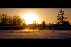 Thermal shock - Frosty mornings (bonus) (Marc Benslahdine) Tags: macro foot jardin bleu explore neige frontpage stade brume glace givre lightroom glacial fraicheur tamronspaf1750mmf28xrdiii canoneos50d marcopix marcbenslahdine chocthermique matinsgivrs gettyimagesfranceq1 marcopixcom