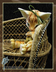 Shy Kitty (TheMushroomPeddler) Tags: cat ball doll kitty bjd joint anthro