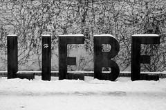 * (...storrao...) Tags: blackandwhite bw snow berlin germany garden deutschland nikon pb mitte pretoebranco liebe d90 storrao sofiatorro nikond90bw