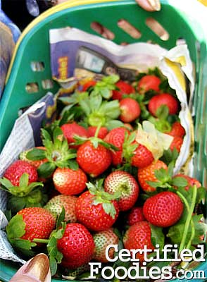 Freshly-picked strawberries from Baguio's Strawberry farm - CertifiedFoodies.com