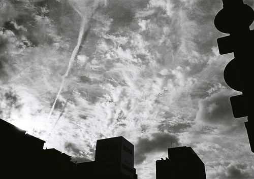niigata monochrome film 19