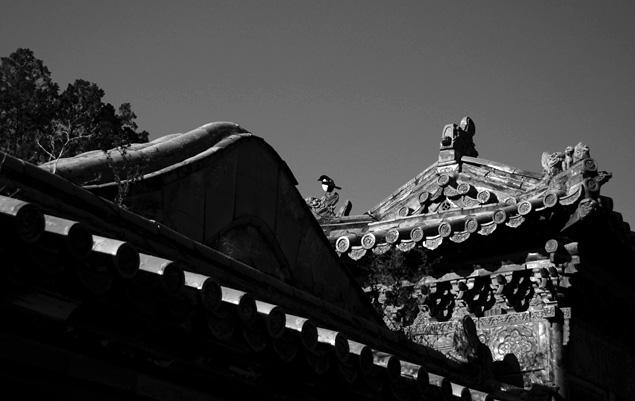 Christmas Eve @ Forbidden City