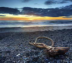 Washed Up (Didenze) Tags: california wood blue sunset sky beach clouds debris pebbles explore fusion sanclemente frontpage washedup canon450d vertorama didenze