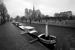 Notre Dame Cathedral / Katedrla Notre-Dame (Jirka Chomat) Tags: bridge paris france church water river cathedral notredame most siena francie voda kostel katedrla eka pa chrm gotika ernobl