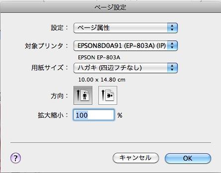EPSONカラリオIllustratorで設定