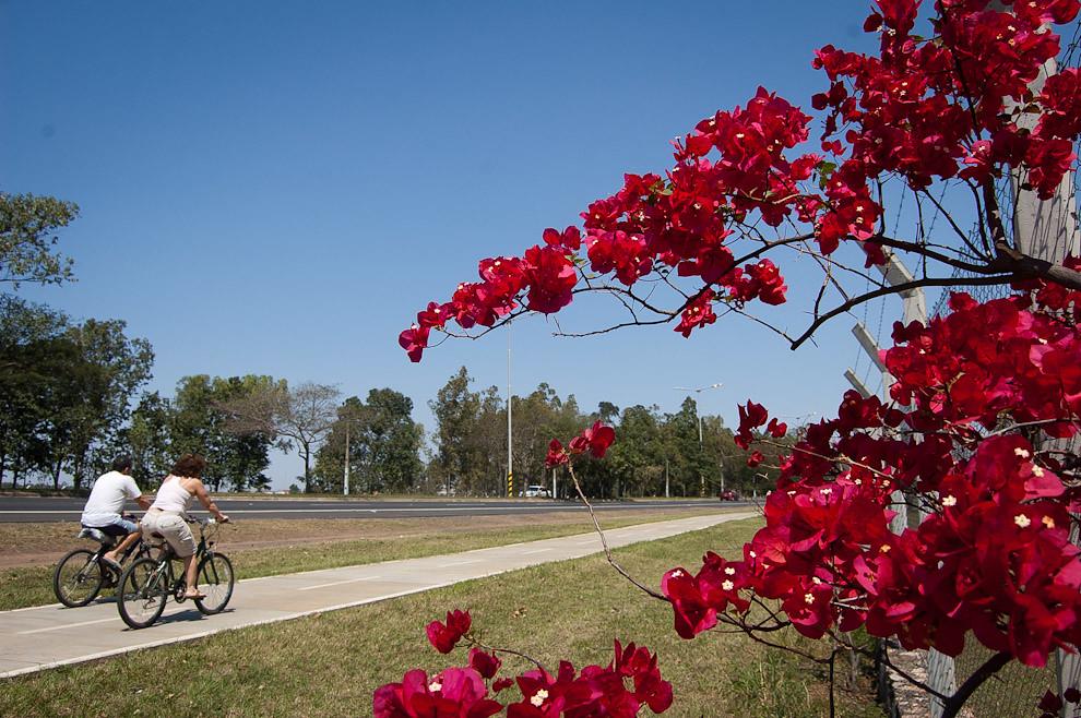 Paseo en bicicletas son vistos desde los inicios de los días de primavera en el Parque Ñu Guazú de Luque, asi como varias actividades de esparcimiento en la naturaleza. (Elton Núñez - Luque, Paraguay)