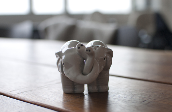 elephant-salt+pepper