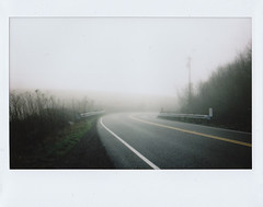 welcoming the new year. (susan . {en pointe}) Tags: california road mist film fog magic bayarea mystical northern magical tomalesbay instax