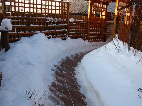 edmonton snow 001