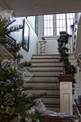 Rives Mansion staircase