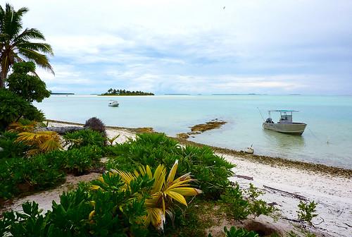 Unfaithful Island