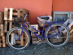 Candies For Brbara | Doces para Brbara! (Andre Carregal) Tags: wood blue orange bicycle azul wall fruit de floor details laranja bicicleta fruta boxes cho madeira parede detalhes caixas sooc