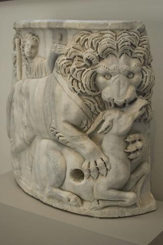 d5 MET lion