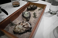 smoked oyster, juniper (Alien J) Tags: oregon matt portland lightner castagna