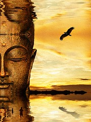 Buddha 2 reflection (Chrisseee) Tags: travel sunset sea sky reflection bird face silhouette clouds thailand asia hawk buddha digitalart canvas getty 365 kristiinahillerstrm chrisseee