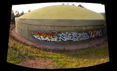 Enero, Suenos, and Lone (Waves of Perception) Tags: birthday art graffiti enero pi vandalism lone suenos ase tfn tfnk