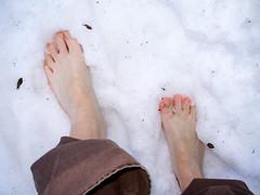i dare you...by moddom (moddom [modern domestic]) Tags: white snow cold barefoot feedingthebirds coloroftheday