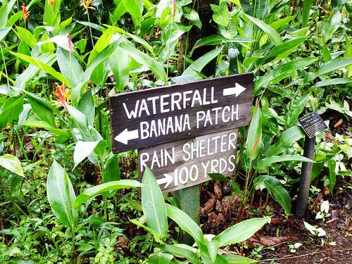 Waterfall sign in Hawaii DSCF0116_labeled