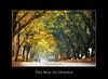 The Way to Heaven (Harvarinder Singh) Tags: harvarindersinghphotography harvarindersingh punjab beautifulpunjab ludhianachandigarhhighway neelon neelonbridge floatingrestrauntneelon neelonpull towardsludhiana ludhiana samrala waytoheaven canon