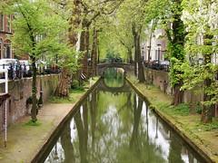 Nieuwegracht (indigo_jones) Tags: trees holland green water netherlands reflections canal spring bomen utrecht groen nederland bicycles ethereal lente fietsen nieuwegracht blooming voorjaar