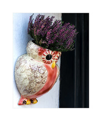 39/52: Birds (hehaden) Tags: bird owl pot flowerpot hanging heather dunster somerset 52photos2016