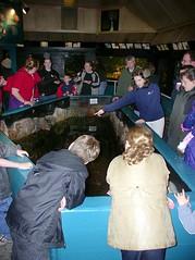 Aquarium Fundraiser