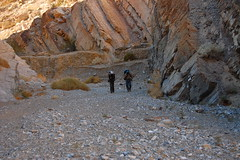 DeathValley_CtoM_184 Photo