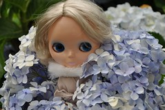 APRIL in the middle of the flowers. (Hydrangea)