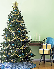 snag cheap christmas trees at the delancey street lots - Christmas Trees Cheap