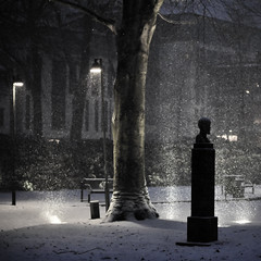Snow Dances (Explore) (PetterPhoto) Tags: park winter light snow tree fountain statue nikon explore nikkor kristiansand 50mmf14g d300s wergelandsparken absolutegoldenmasterpiece petterphoto truthandillusion
