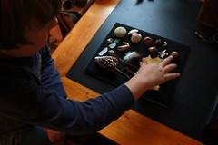 Making the Shadow Box (Dawn Suzette) Tags: shadowbox giftsfromnature naturecraft themagnifyingglass naturefromnovascotia