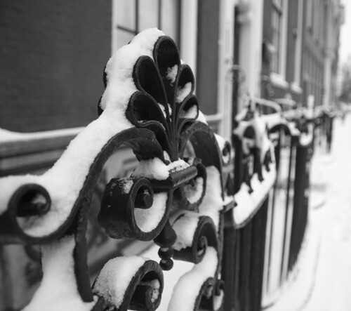 Snow fence Delft Black and White
