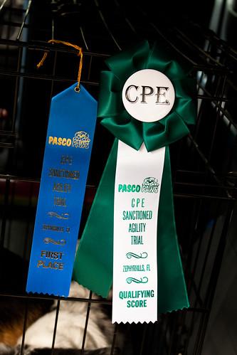 CPE Trial Dec 2010-6