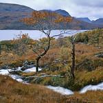 Scotland-2010-o