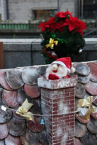 Merry Christmas Week / いよいよ登場です!