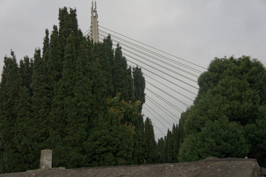 The William Dargan Bridge - Dundrum