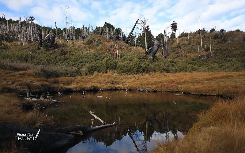 加羅山下的豪邁池