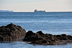 At Sea (smilla4) Tags: water rocks shoreline shipping cobscookbay lateautumn lubecmaine westquoddylighthousestatepark