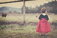 {birthday girl} (tolly p) Tags: birthday winter red cold texture field grass fence happy december dress cows daughter curls 2yearsold rubyshoes